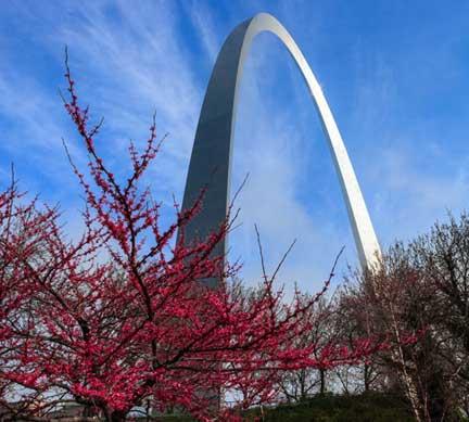 Missouri Office (St. Louis)